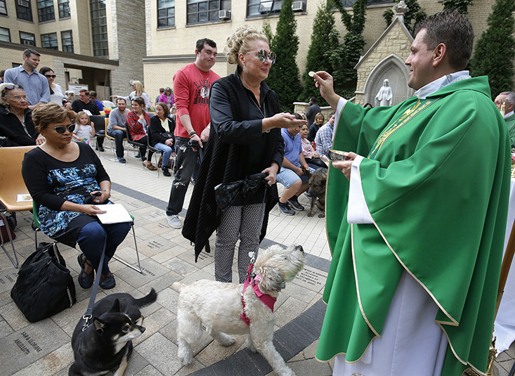 Pets receive St  Francis blessing at Holy Name - Photos